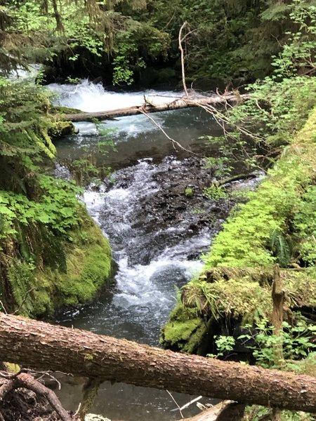Little River is awe-inspiring. Wonderful trail.