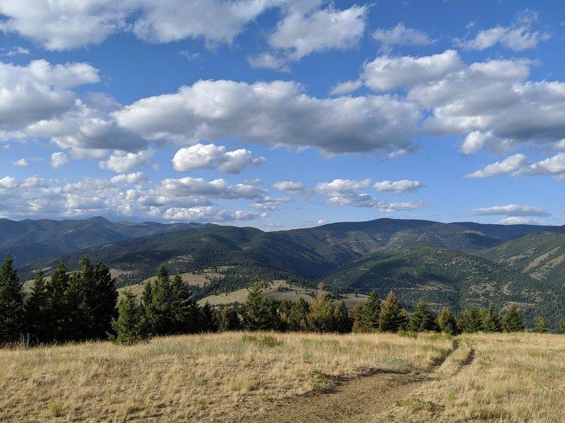 Northward view from Mt. Jumbo summit.