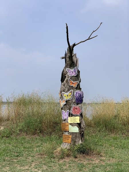 Decorated dead tree.