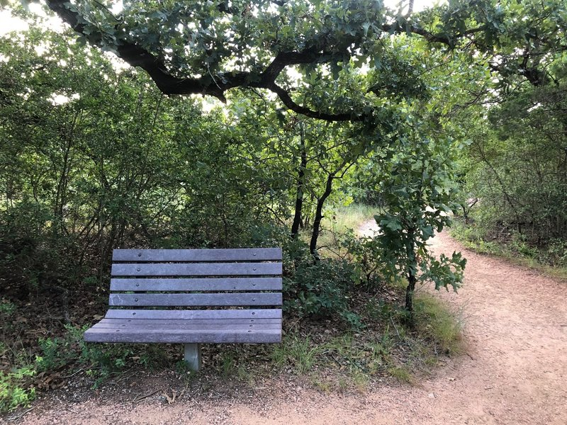 There are many benches along the trail to stop and take a break at.