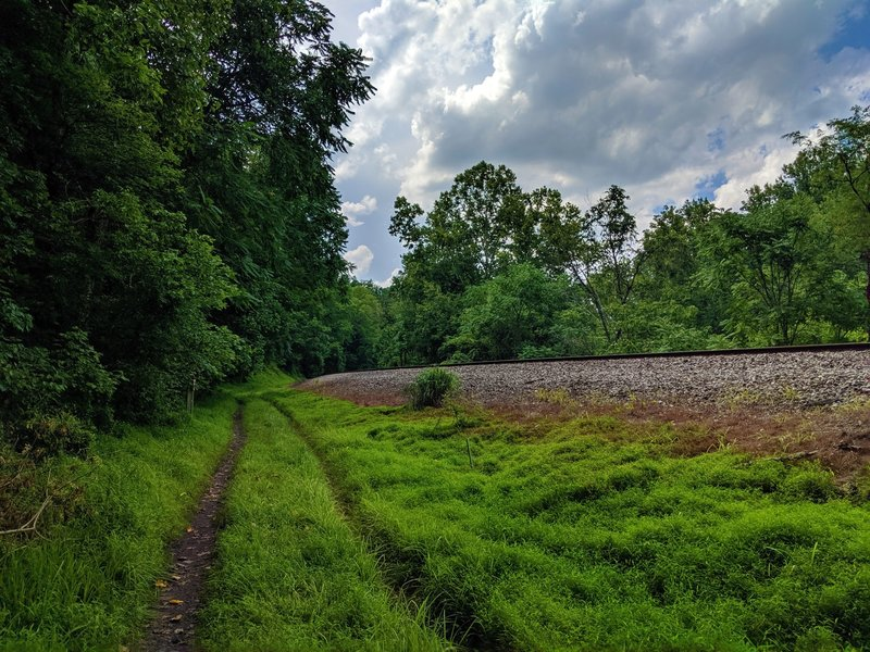 View headed north along the Railroad Access Road Trail.