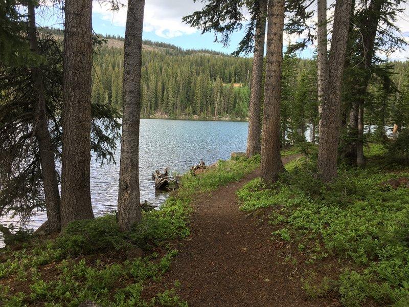 Nice view of the lake.