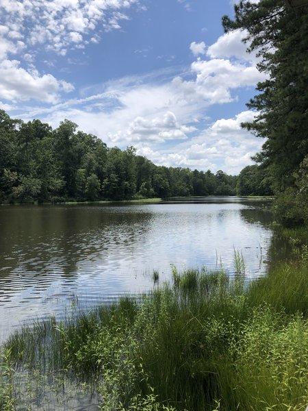 Beautiful hiking around the lake