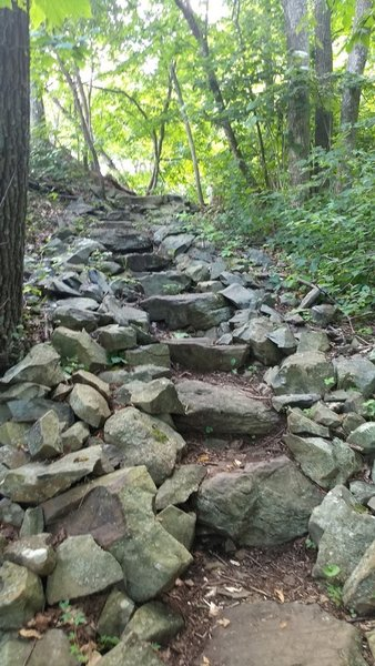 Trail stairs.