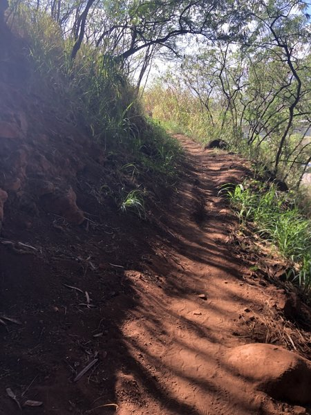 Red dirt trail.