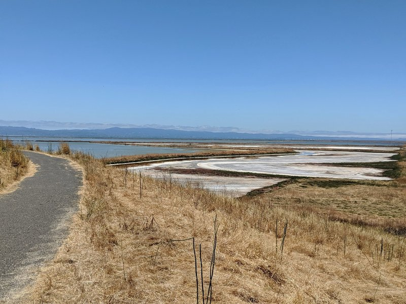 The Bayview Trail intersects the Alameda Creek Trail.