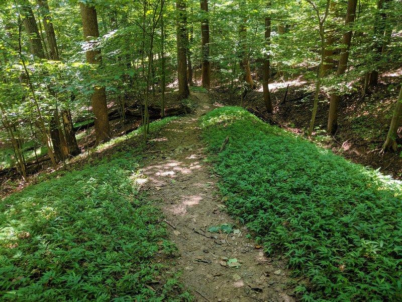 View of a trail winding down a narrow ridge.