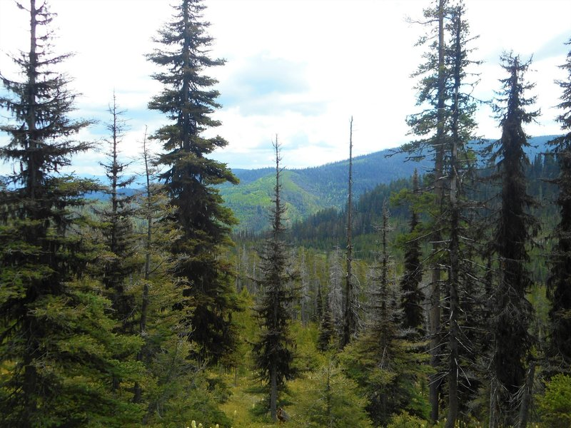 View from Porcupine Basin.