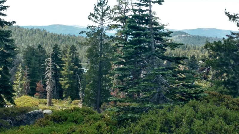 Looking down from the ridge to Wrights Lake.