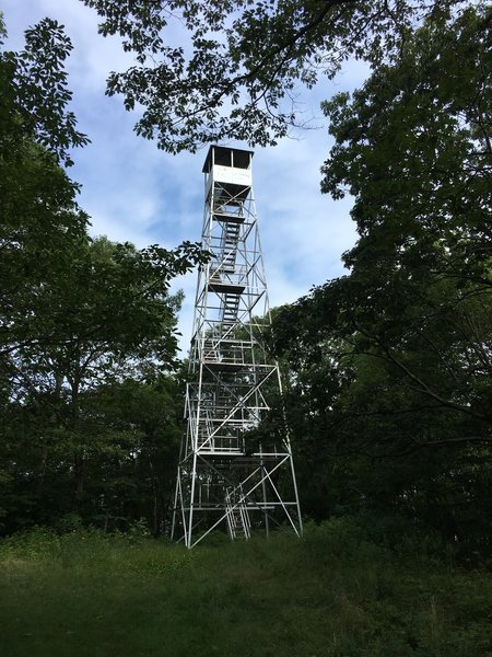 Beebe Hill Fire Tower - climb up for a beautiful 360 view!