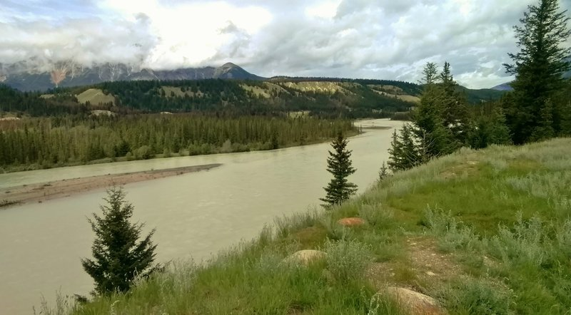 The Athabasca River looking northwest from the Athabasca River Trail. Pyramid Mountain is hidden in the clouds on the left.