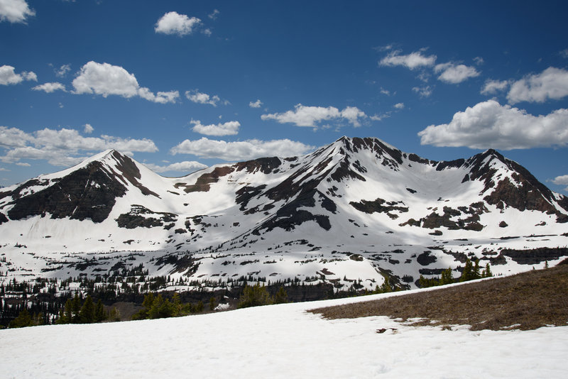 View of the Ruby Range from top of the ridge