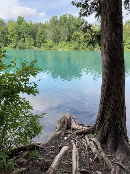Green Lake has a unique color due to its high mineral content.