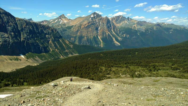 Climbing to the second Cavell Meadows viewpoint. The views are definitely worth the climb!