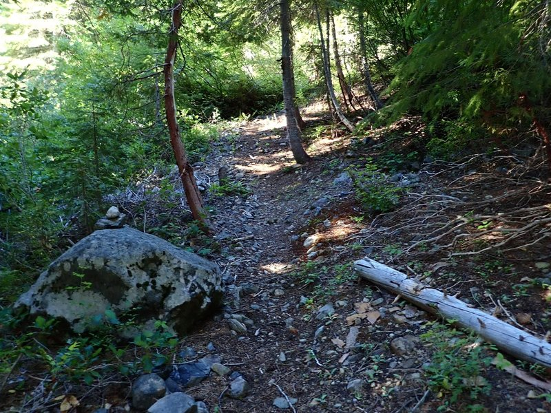 Some sections of the old trail are still clearly visible.