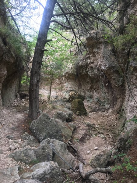 Boulders in the trail
