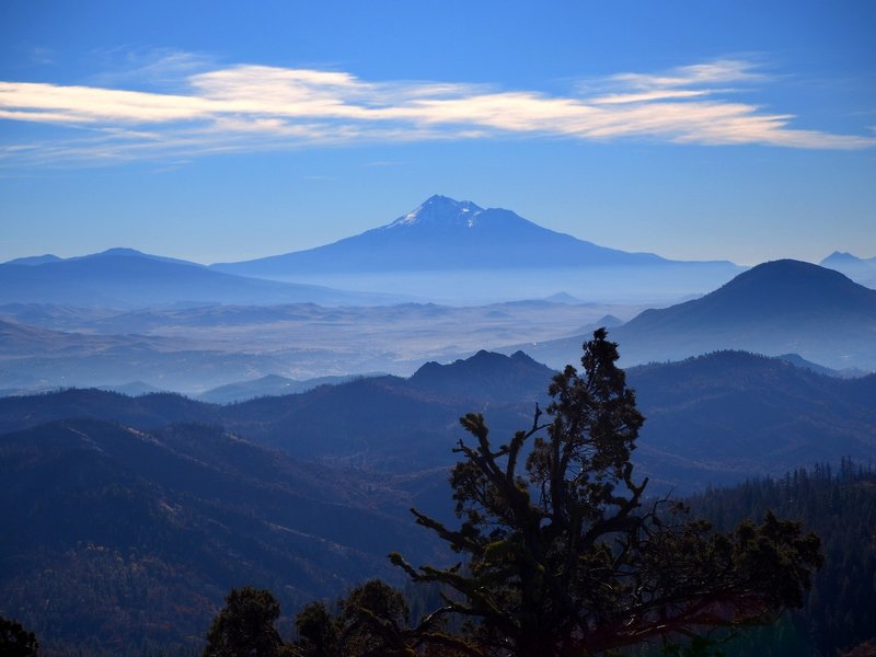 Mount Shasta from Rhyolite Ridge
