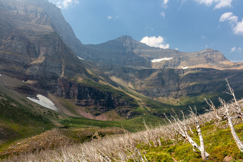 On your ascent to Siyeh Pass, you'll pass through an area burned a few years ago