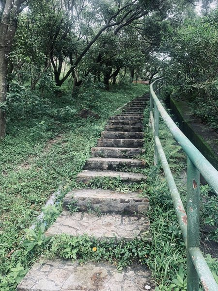 The beginning of the hike, take these stairs