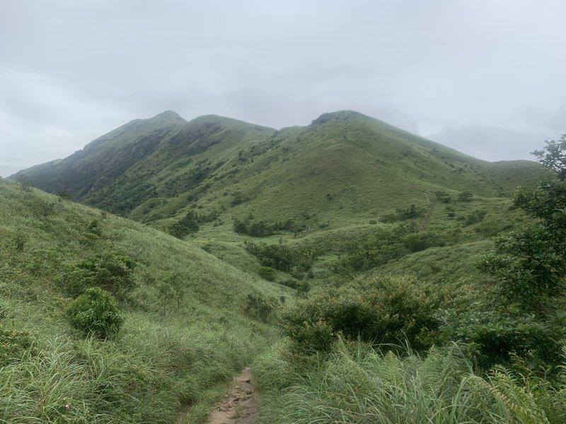The grassy mountain