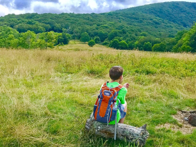 A young hiker enjoys the view of Whigg Meadow and beyond.