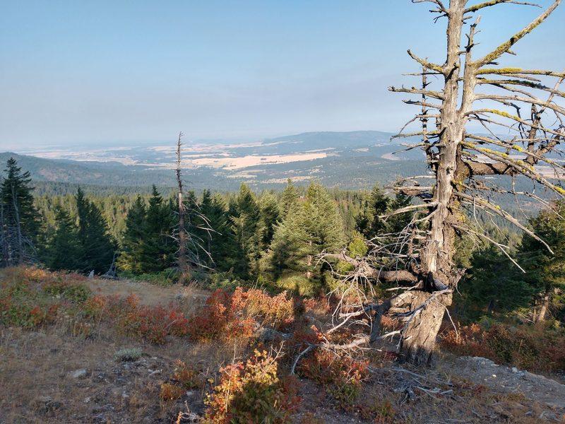 Spokane from Mica Peak