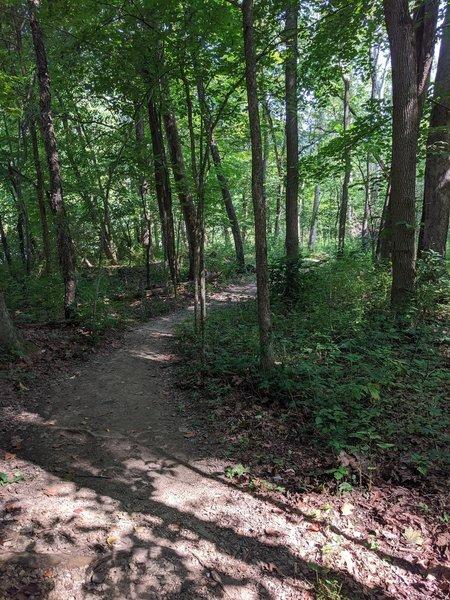 Furnace Run trail, CVNP