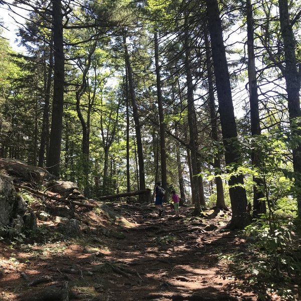 Trail up to the summit
