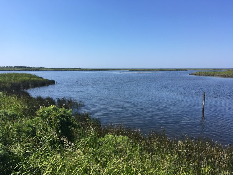 First overlook of the sound on the Audobon Pine Island Nature Trail