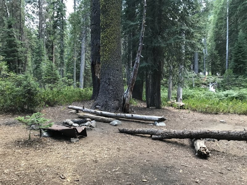 Camp site on Boulder Creek Trail