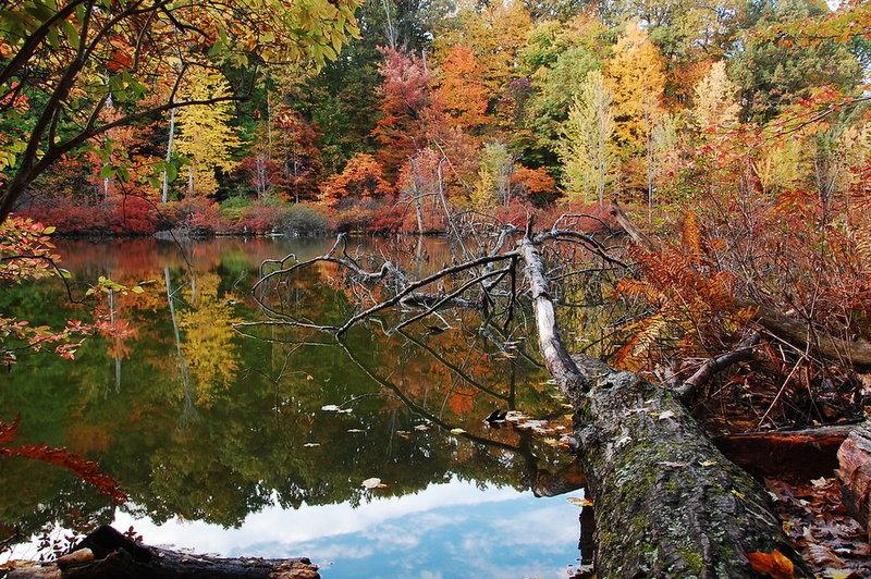 Devils Bathtub with autumn colors.