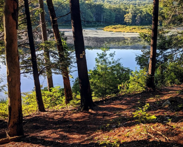 An early morning view of Stony Lake in Stokes State Forest, NJ.