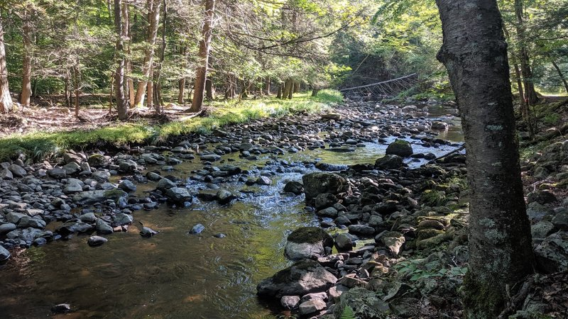 Big Flat Brook meanders alongside Blue Mountain Trail in Stokes State Forest.
