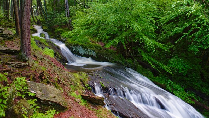 Springtime at a wonderful cascade named Tillman's Ravine in Stokes State Forest, NJ.