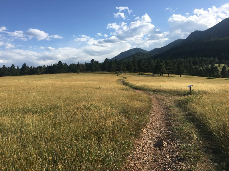 This section of the Spring Brook Loop affords gorgeous views of the flatirons and Eldorado Canyon State Park.