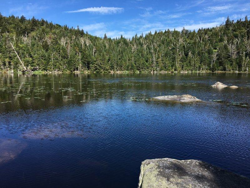 Cooper Kiln Pond