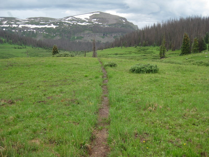 Snowslide Trail