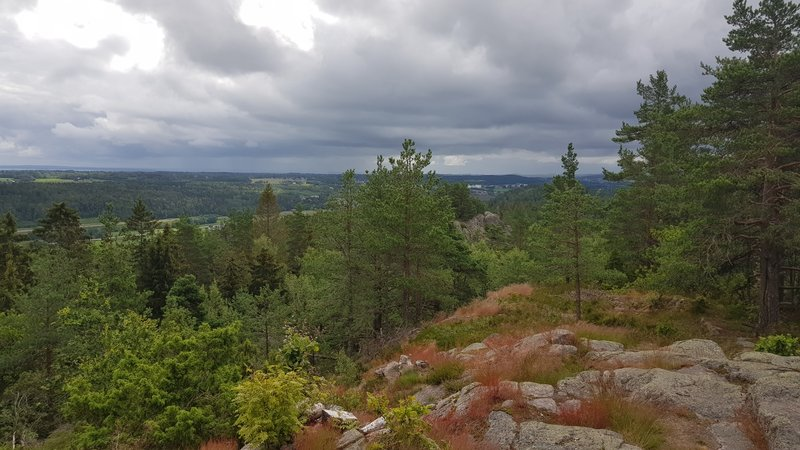 View from Signalen