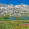 The near side of Lower Davis Lake is surround by green and flowery alpine meadows. You can reach Upper Davis Lake by climbing up the slopes on the far left-center of the picture.