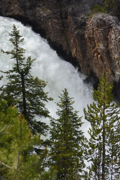 Upper Falls through pine trees from the new overlook