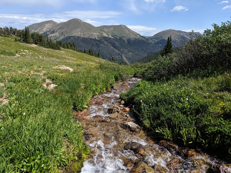 The Butler Gulch creek in the bowl above the treeline, looking towards Berthoud Pass.