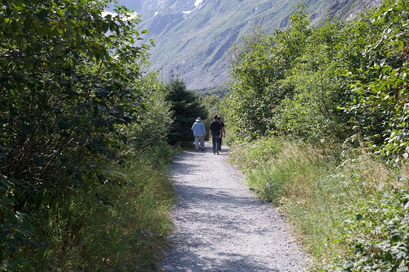 The trail is made of gravel and is fairly flat and wide as it climbs gently toward the glacier.
