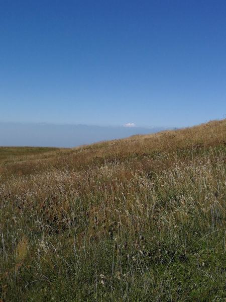 Mt. Elbrus in the distance, as seen from the top of the hike.