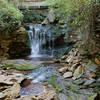 Elakala Waterfall #1