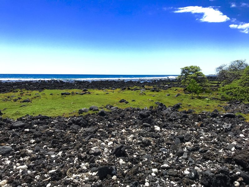 The trail winds along the coast. Intermixed with the black igneous rocks are bleached coral skeletons.