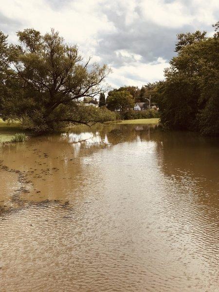 Ellicott Creek 2