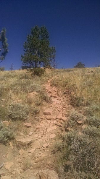 One of the rocky descents, loose rocks make it a bit more challenging.