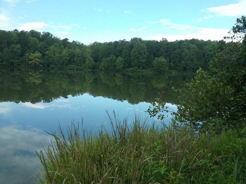 View of the Big Lake.