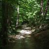 Jemison Park Trail in Mountain Brook, Alabama
