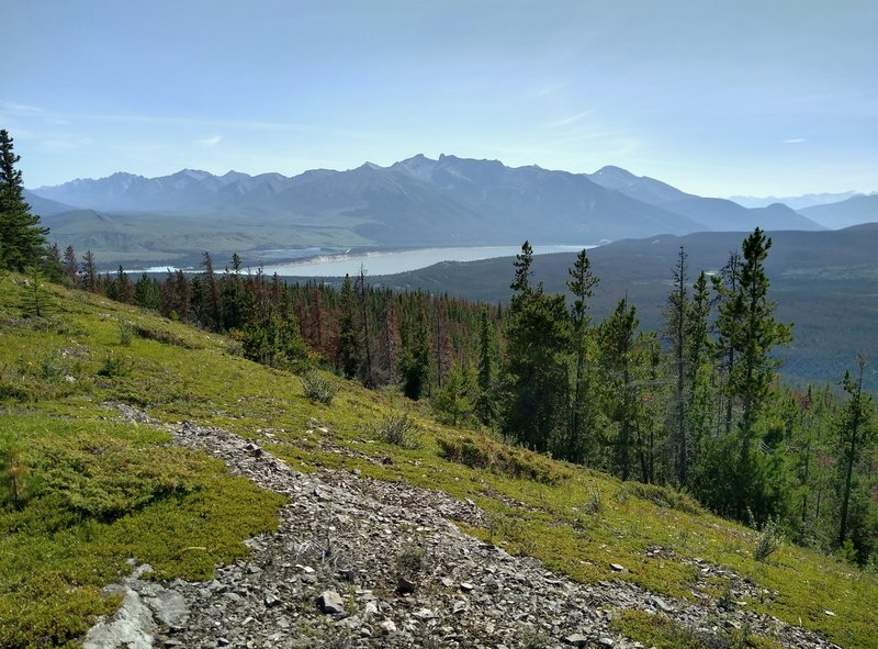 The broad Athabasca River in the distance, below mountains of the Jaques Range is seen to the south-southeast from Devona Lookout.